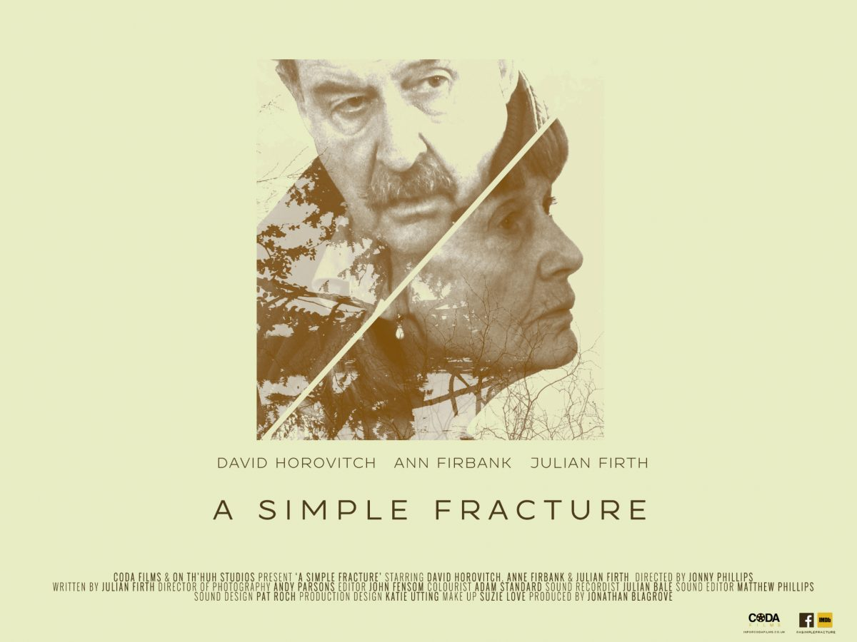 'A Simple Fracture' promotional poster.